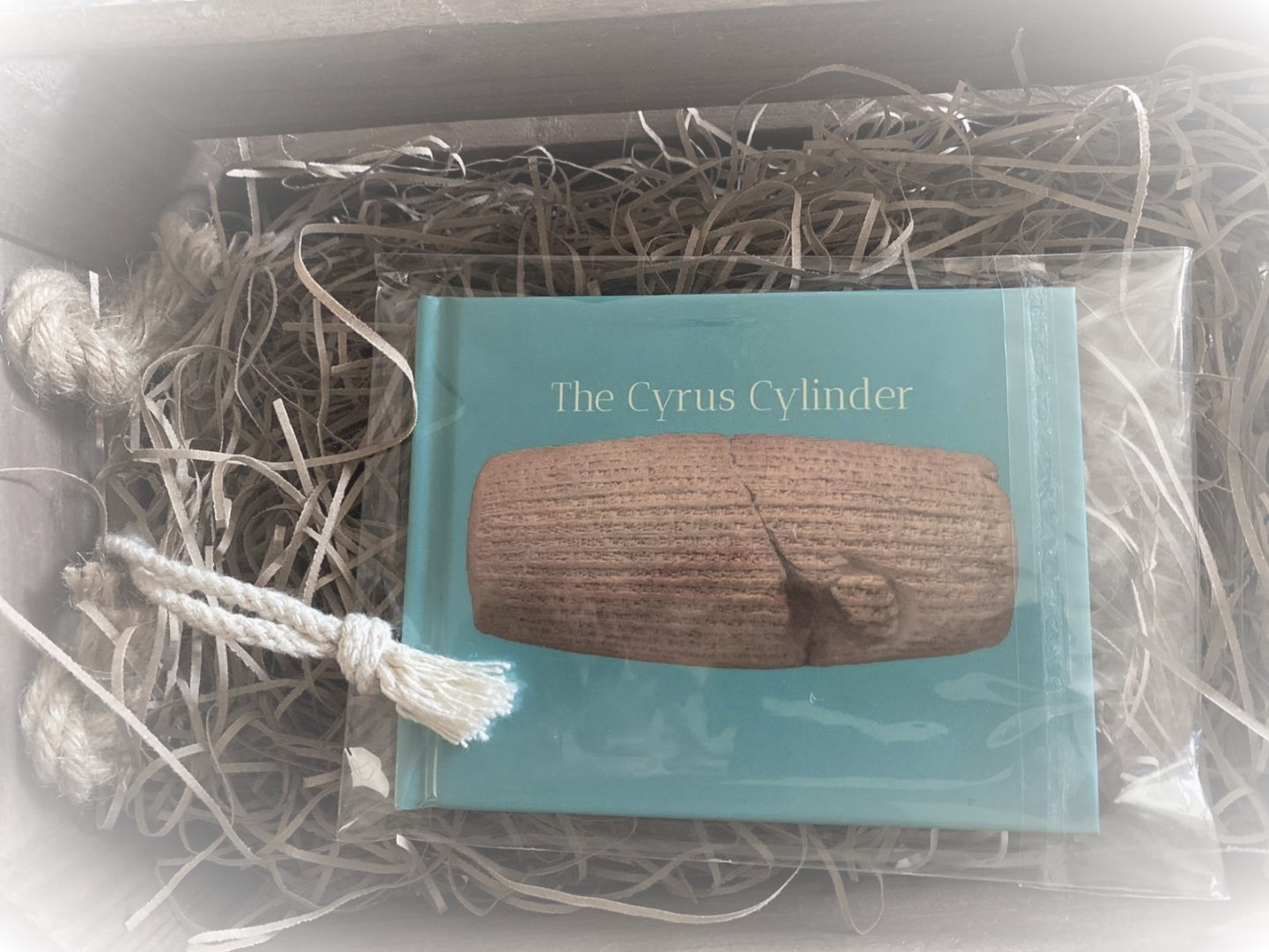 The Cyrus Cylinder Book